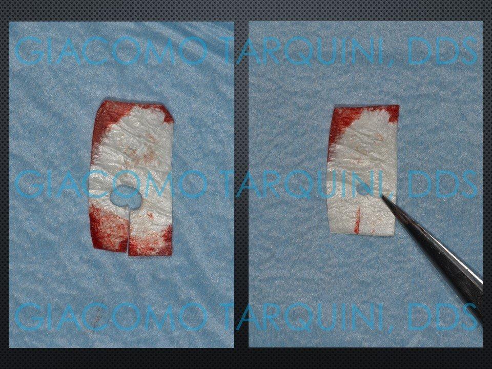 Diapositiva19.JPG.480be5022f0469f12241199e66d3be05.JPG